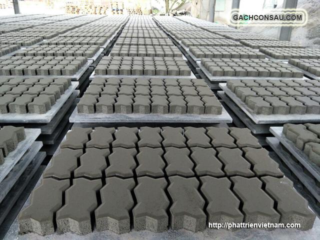 Một nhà máy sản xuất Gạch Việt, kho xưởng gạch con sâu lát vỉa hè, gạch bê tông tự chèn, gạch block tự chèn