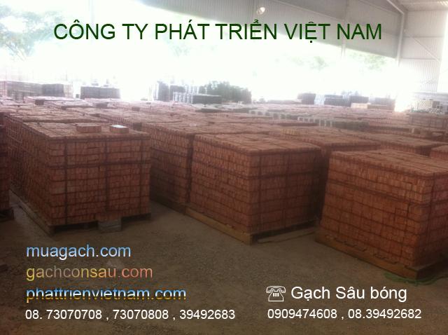 Nhà máy gạch bê tông, gạch sâu bóng. Công ty Phát Triển Việt Nam thương hiệu Gạch Việt