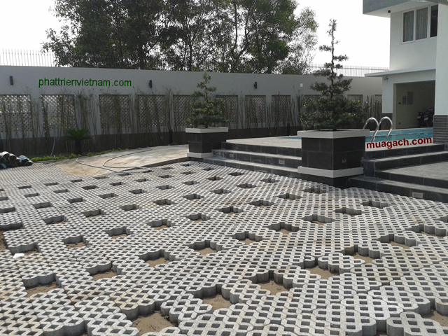 Sân vườn biệt thự với gạch trồng cỏ 8l1