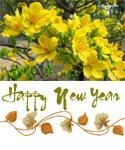 Happy New Year 2016 | muagach.com