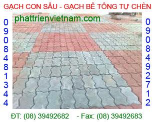 Gạch con sâu lát sân công ty Phát Triển Việt Nam