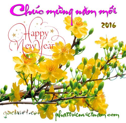 muagach.com Mua Gach Happy New Year 2016