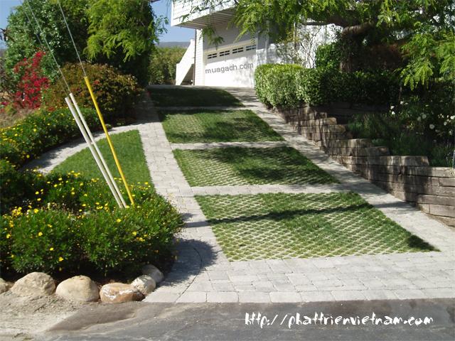 gach trong co, gạch trồng cỏ, gạch block, gạch nhựa, gạch trồng cỏ, gạch vỉa hè, gạch terrazzo, gạch con sâu, gạch lót sân, gạch xây dựng và sàn nhựa  - Gạch trồng cỏ 8L1
