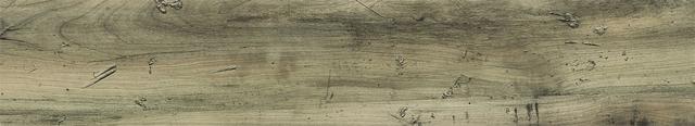 Sàn Nhựa vân gỗ Classic MSC 5010 | gach nhua, gạch nhựa, chuyen gach nhua, chuyên gạch nhựa, chuyen san nhua, chuyên sàn nhựa, thi cong san nhua, thi công sàn nhựa, gach gia go, gạch giả gỗ, gach nhua gia go, gạch nhựa giả gỗ, gach nhua van go, gạch nhựa vân gỗ, gach go, gạch gỗ, san nhua, sàn nhựa, san go, sàn gỗ, nhua go, nhựa gỗ, nhua gia go, nhựa giả gỗ, mua gach nhua, mua gạch nhựa, ban gach nhua, bán gạch nhựa, aroma, myung sung, galaxy, deco, tile, galaxy deco tile, ms galaxy tile, Sàn gỗ vinyl
